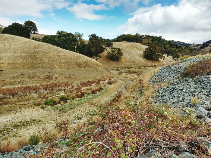 California Drought Empty Streams Still Beautiful  Hillside Drought Dry Grass Brown Makesyouthink