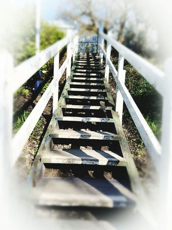 The Way Forward White Steps Steps And Staircases White Wooden Steps Railing No People Day Outdoors Stairway Appreciate The Scenery Delamereforest Low Angle View Scenics Stairway To Heaven (or Hell)