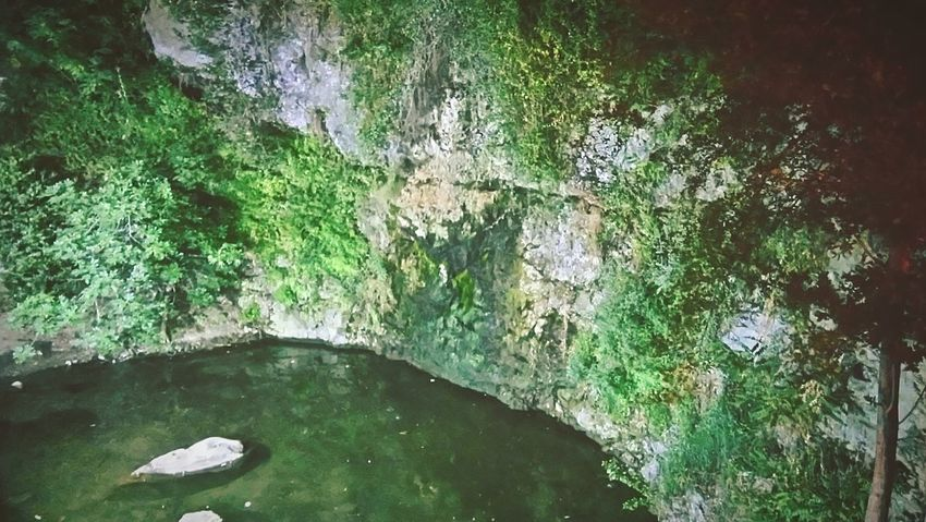 Hidden Gems  Exotic River River View Plants Water Reflections Waterfall Nature Nature Photography Nature Beauty Water Cyprus Kakopetria