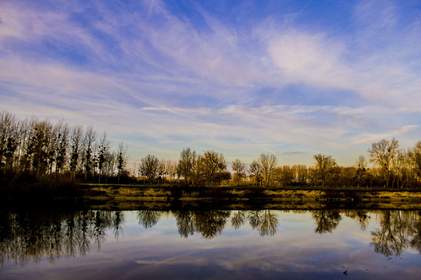 Lake reflection Country Tree Winter Beauty In Nature Blue Sky Cloud - Sky Countryside Day Europe Lake Nature No People Outdoors Peaceful Reflection Scenics Sky Still Symmetry Tranquil Scene Tranquility Tree Water Whispy Clouds Yellow