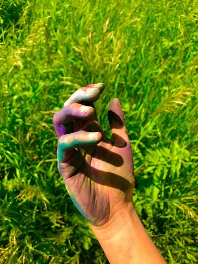 Paint On Hands Paint Hand Human Hand Grass Human Body Part Green Color One Person Outdoors Real People People Nature Day Close-up Art The Great Outdoors - 2017 EyeEm Awards Colors Tall Grass Sommergefühle