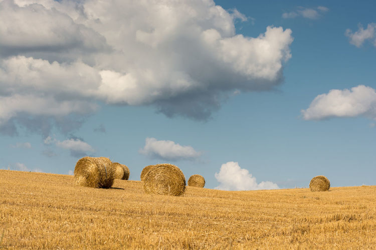 Hay Bales In Fields Against Clouds