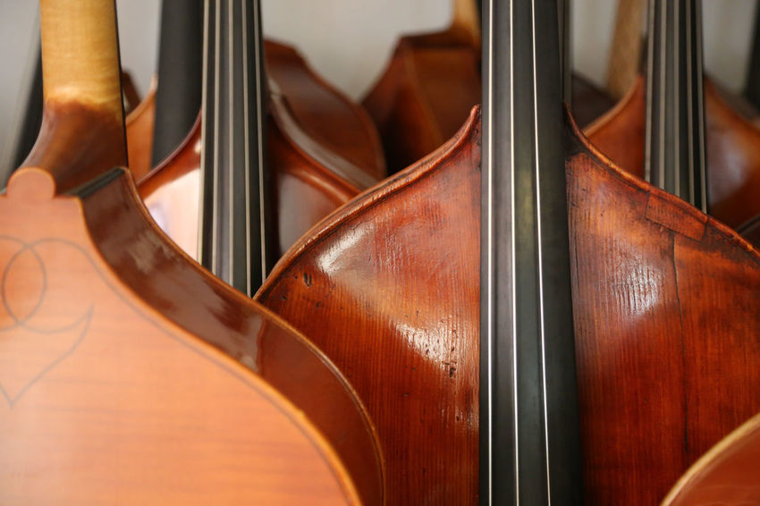 Lots of double basses at a luthier's Classical Music Jazz Kontrabass Luthier Bassbauer Brown Classical Music Close-up Day Double Bass Double Basses Indoors  Instrument Maker Music Musical Instrument Musical Instrument String No People String Bass String Instrument Strings Of Music Violin Arts Culture And Entertainment