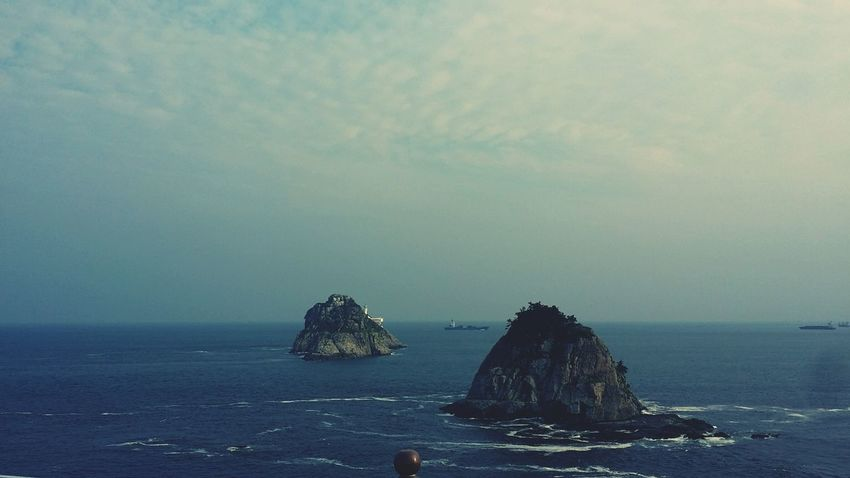 Oryukdo Island In Busan See The Sea Rocky Mountains Geology Humpback Whale Rocky Coastline Physical Geography Rock Formation Abandoned Coast Natural Arch Stack Rock Maui Seascape Geyser Rugged Whale Tail Fin Eroded Rock Hoodoo Canyon Rock Deterioration Natural Landmark