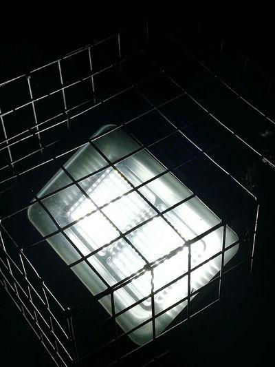 Light in