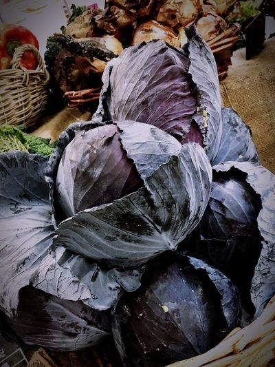 Fresh vegetables Food Close-up Cavolo Cavolonero Blackcabbage Cabbage Vegetables Greengrocer Verdure Foodmarket Vegan VegetarianVegetablemarket Freshvegetables Market Foodphotography Healthyfood