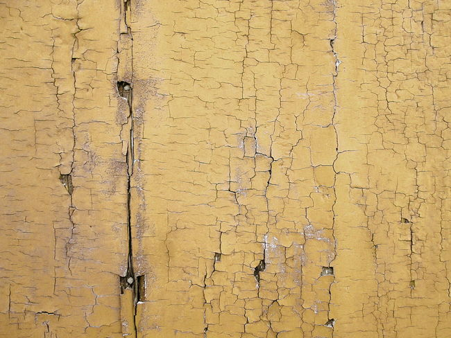 Full Frame Shot of Brown Weathered Wooden Board Background ArchiTexture Backgrounds Brown Building Exterior Close-up Closed Day Full Frame No People Ochre Old Outdoors Pattern Scratched And Cracked Wood Texture Textured  Textures And Surfaces Timber Weathered Wood Wooden Yellow