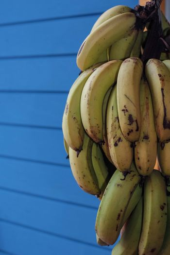 Close-up of bananas against blue wall