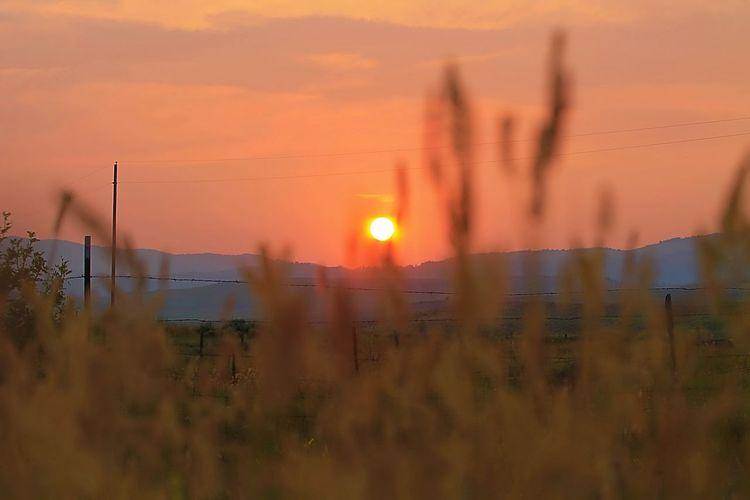 Aug sunsets