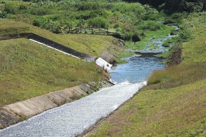 Drainage in rural Water Nature Tranquility Day Tranquil Scene Beauty In Nature Scenics Grass Outdoors Green Color Tree Rural Way Waterway Drainage
