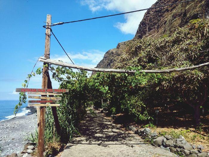 Fajã dos Padres Tranquility Tranquil Scene Fajã Dos Padres Nature Relaxing Virgin  Ocean Island Madeira Madeira Island Water Tree Fishing Net Sea Sunlight Sky