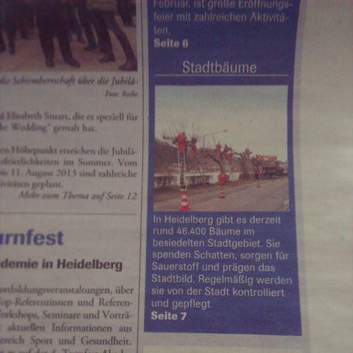 Wieviel #Bäume habt Ihr so in eurem Ort? Wir in #Heidelberg haben rund 46.400 Bäume. (Quelle: #Stadtblatt Ausgabe Nr. 8 vom 20.02.2013) Heidelberg Bäume Stadtblatt