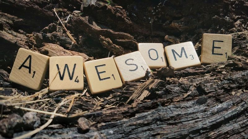 Text Communication Single Word Label Number Message Alphabet Wood - Material No People Close-up Day Nature Awesome Positive Motivation