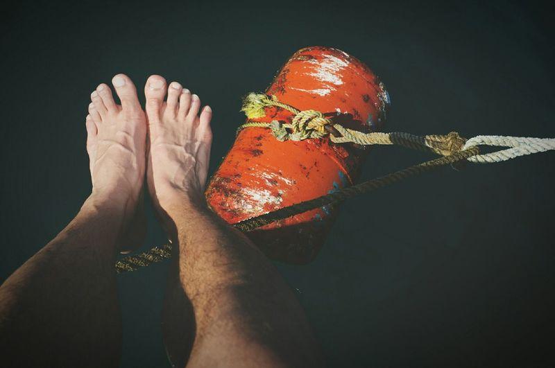 Barefoot Thesepuppiesneedsomesun Wintervacation Mexicansunmeetcanadianfeet