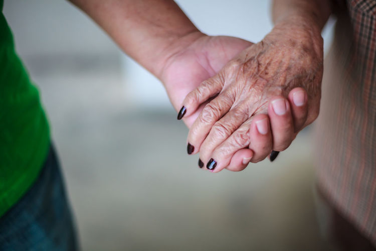 Close-up of man holding senior woman hands