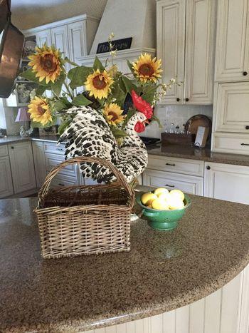 Day Flower Freshness Golden Egg Home Interior Indoors  Kitchen Ray Of Sunlight Sunbeam