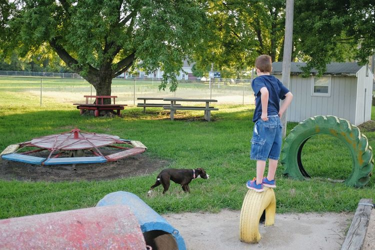 Boy Standing On Tire At Park