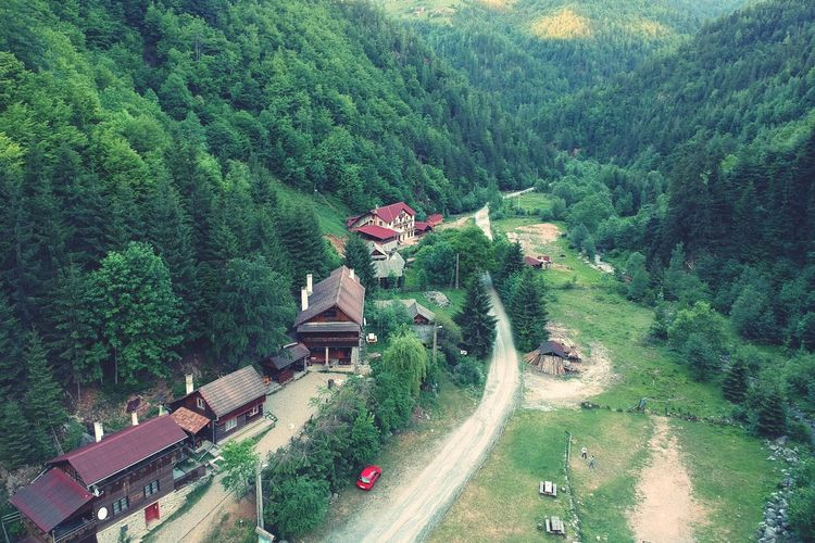 Road Nature Beauty In Nature Village Transylvania Romania Forest Drone  Drone Photography Forest Photography Dronephotography Plant Tree Growth High Angle View Green Color Architecture Built Structure Day Nature Building Exterior No People Landscape Beauty In Nature Transportation Building Outdoors House Land Lush Foliage