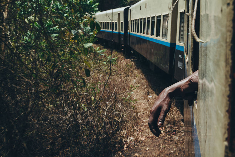 A hand dangles out of a window on the old train to Hsipaw. - IG @LostBoyMemoirs (Photos taken on Canon 650D Rebel T4i, edited in Lightroom.) People People Watching People Photography Streetwise Photography Street Photography ASIA Myanmar Burma Myanmar Culture Myanmarphotos Adventure Backpacking Culture And Tradition Cultures Exploration Travel Destinations Train Train - Vehicle Transportation Plant Rail Transportation Day Public Transportation Human Hand Human Body Part Nature Mode Of Transportation Real People Tree Outdoors Hand One Person Land Body Part Lifestyles Track My Best Photo The Art Of Street Photography