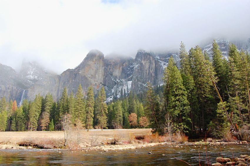 Yosemite National Park Yosemite Taking Photos Landscape Hello World Trip Taking Photos Fog Foggy Nature