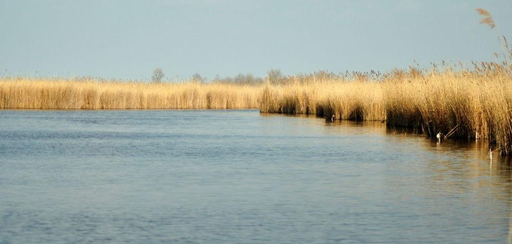 Idyllic Lake Landscape Nature Outdoors Water Waterfront