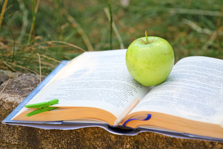 Fresh green apple on an open book outdoor in the grass. Time for school. Learn and healthy food concept. Apple and a book. Open schoolbook. Open manual and fruit outdoor. Nature and education. Back to school concept. Education and nature. Open book with pencil outdoor. Time for school and reading. Learning outside. Schoolbook and pen. Pencil and open manual. Apple Education First ! Green Light Read Science Student Book College Concept Culture Education Fruit Healthy Eating Lawn Leanrning Outdoors Reading A Book School Schoolbook Study Sun Window To World World