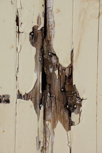 Damaged Old Paint Paint Peeling Off Splinted Wood Wooden Door