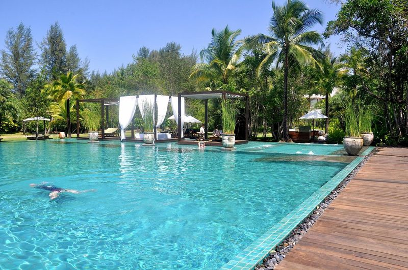 Holiday Summer Sunlight South East Asia ASIA Tree Water Swimming Pool Swimming Blue Palm Tree Sky Resort Infinity Pool Pool Holiday Villa Villa