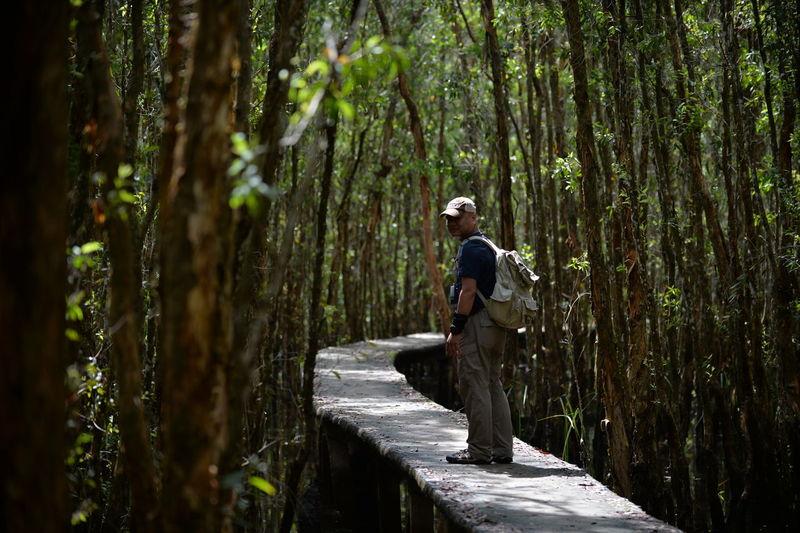 Side view of man walking on footbridge in forest