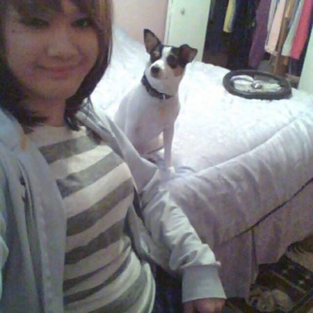 This rat right here is my kid lol Rat Terrier Rattie Cute Bestfriend KAWAII Doggy LOL