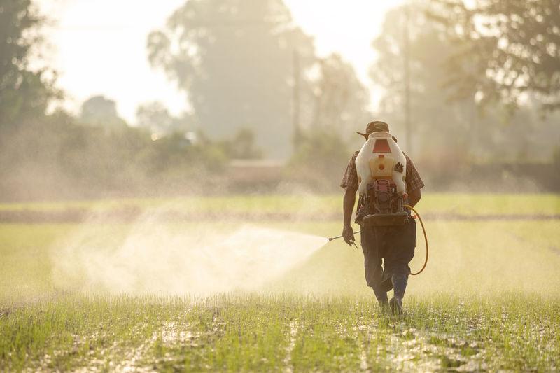 Man walking on field