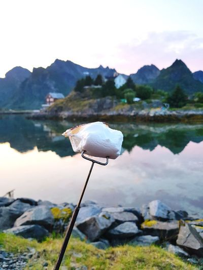 Marshmallow on skewer by lake against mountain range