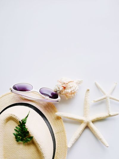 My big holiday preparing to the sea beach Let's Go To The Sea!!! Copy Space For Design Summer Hat Starfish  Still Life Table Food And Drink Indoors  No People Food Freshness White Background