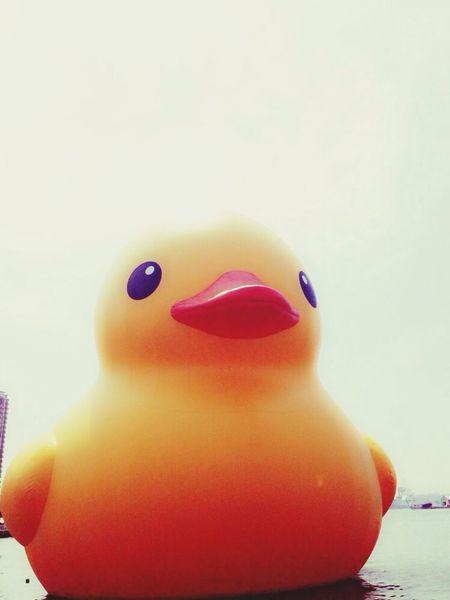 TheWorldNeedsMoreYellow Yellow Duck ..i Wanna Seem Simple..