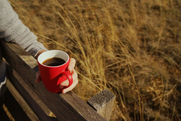 Cup Drink Refreshment Mug Coffee Cup Coffee Focus On Foreground Wood - Material Coffee - Drink Red Day Food And Drink Land Nature Field High Angle View Close-up Real People Plant Outdoors