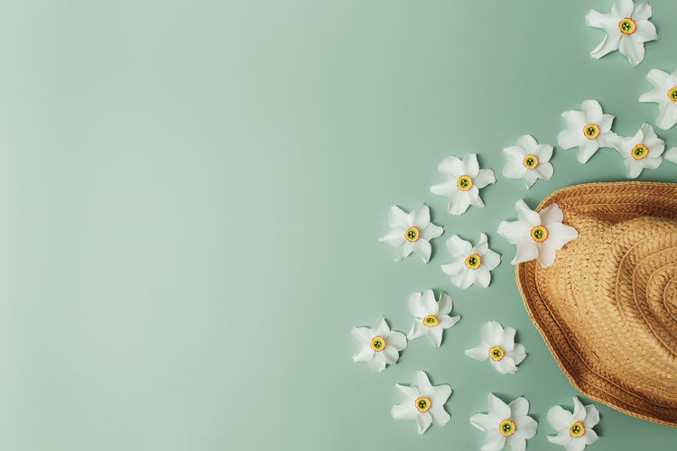 Summertime collection concept flat lay on green background with straw hat, flower heads of daffodil