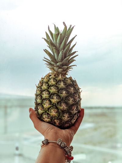 Cropped hand of woman holding pineapple outdoors