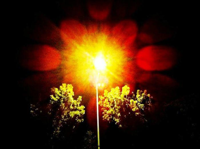 Lightpost Lights Night Lights Nightphotography Colors