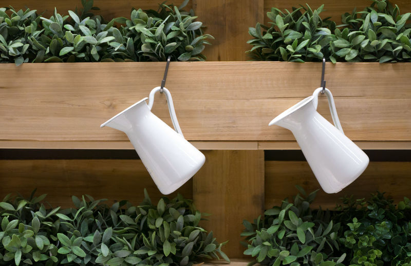 Beauty In Nature Close-up Container Day Freshness Green Color Growth Herb High Angle View Houseplant Indoors  Ingredient Leaf Nature No People Plant Plant Part Plastic Bag Potted Plant Table White Color Wood - Material