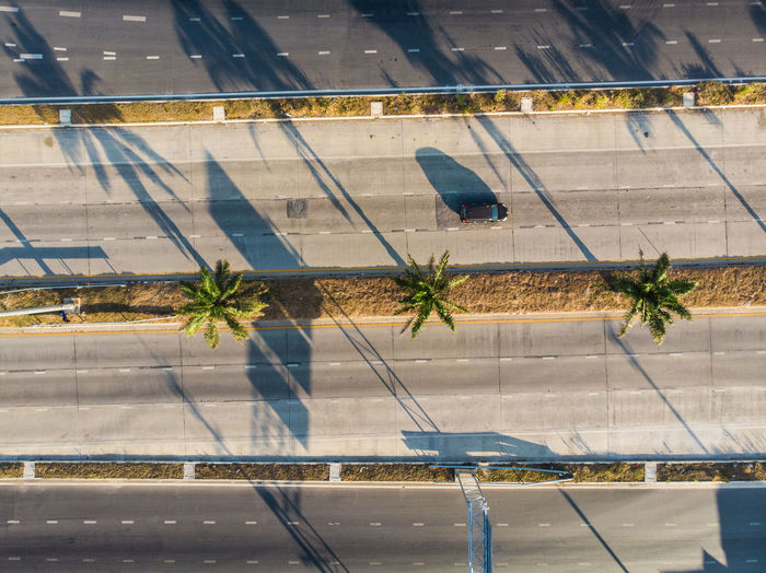 High angle view of trees amidst roads