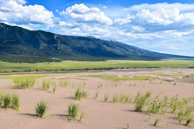 Colorado Sand Sand Dunes Nationalpark