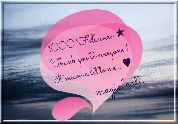 For My Followers ♥♥♥