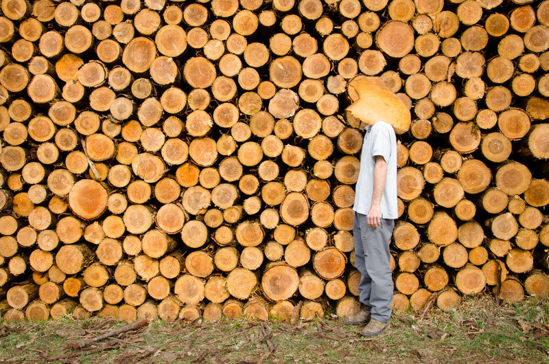 Side View Of Man Standing Against Log Stacks