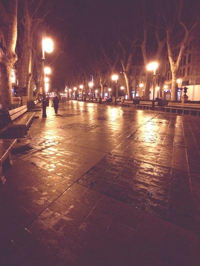 Night Lights Night Palma De Mallorca City Lights Turn Your Lights Down Low