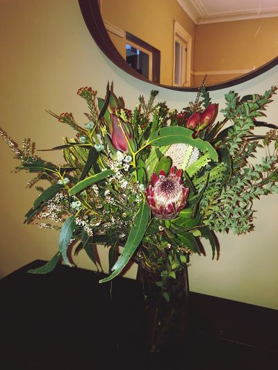 Australian flowers Australian Flower Austraila Architecture Built Structure Home Interior Flower