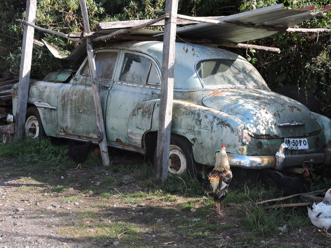 Abandoned Auto Antiguo Chile Damaged Garbage Lago Ranco No People Obsolete Pasado