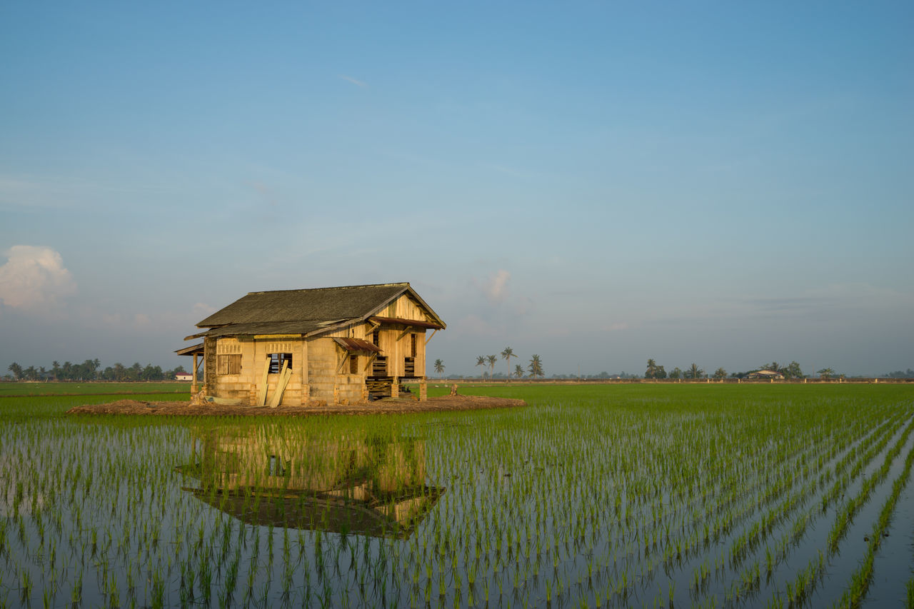 built structure, architecture, field, water, house, tranquility, building exterior, nature, outdoors, grass, no people, agriculture, sky, day, lake, scenics, rural scene, beauty in nature
