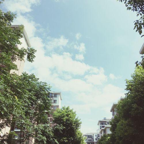 久违的好天气