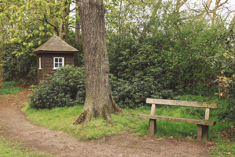 Architecture Beauty In Nature Bench Branch Building Exterior Built Structure Day Forest Grass Green Color Growth House Landscape London Nature Outdoors Park Richmond Park, London Tranquil Scene Tranquility Tree Tree Trunk Wood - Material