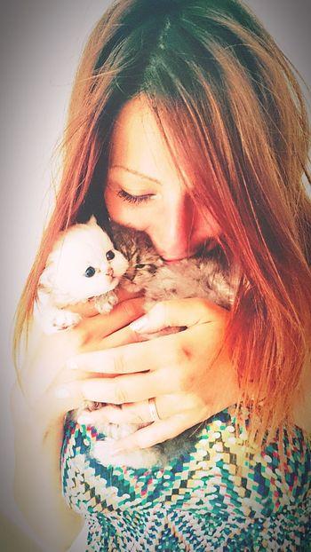 Kitten #adorable